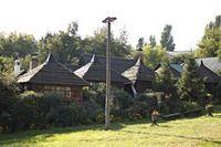 «Козачок» Совки  Киев