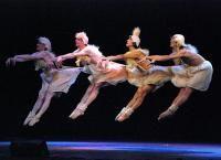 Санкт-Петербургский мужской балет Валерия Михайловского  Санкт-Петербург