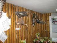 Куриная лапка Севастополь