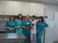 Ветеринарная клиника  Казань
