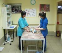 Ветеринарная клиника профессора Равилова  Казань