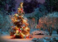 Два или три дня отдыха в загородном отеле «Карвала», пакеты: «Отдых в деревне», «Новогодний» и «Рождественский» для компании со скидкой до 60%!