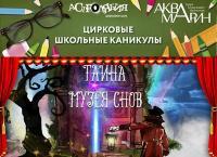Билеты на новую программу циркового представления «Тайна музея снов» в цирке танцующих фонтанов «Аквамарин» от международной компании «Ключ города». Скидка 67%